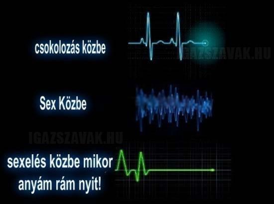 A pulzusom