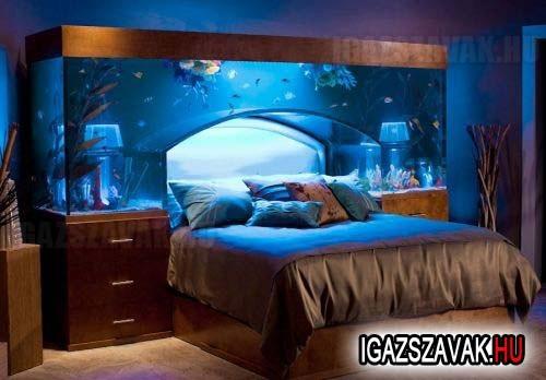 Akvárium ágy
