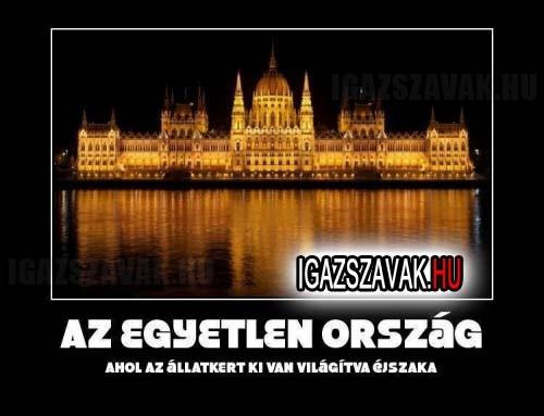 Az egyetlen ország...