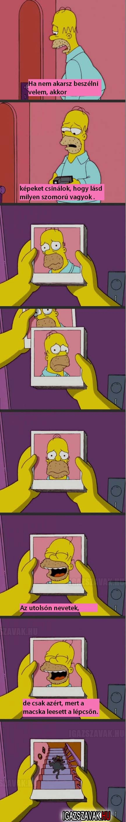 Homer logika