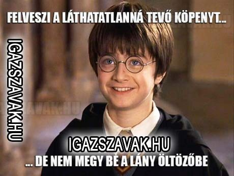 Harry Potter logika