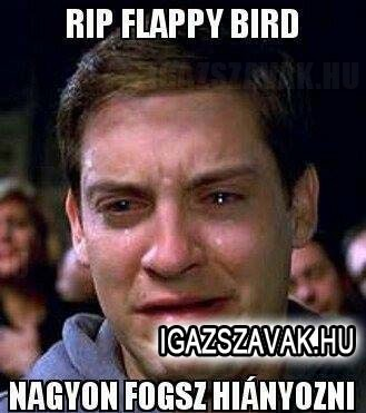Flappy bird...