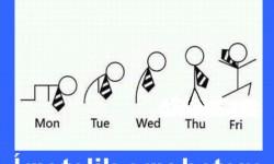 Így telik egy hetem