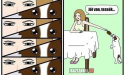 A kutyám vs én