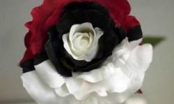 Rózsa téged választalak
