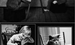 Barátság egy kislány és a cicája között