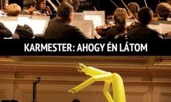 Ahogy én látom a karmestereket