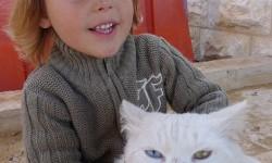 Csak egy lány és a cicája – Vagy várjunk csak!