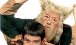 Dumb és Dumbledore