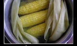 Trollkodó főtt kukorica
