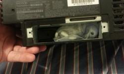 Talált egy kis meglepit a használt PS2-ben
