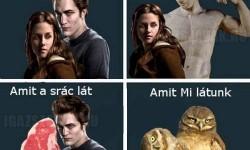 Amit látsz a Twilight-ból