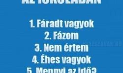Top 7 mondat az iskolában