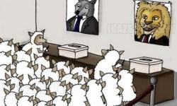 A választás illúziója