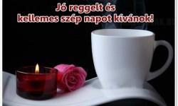 Jó reggelt és kellemes szép napot kívánok!
