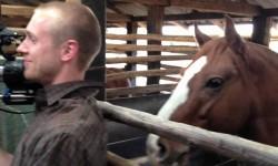 Fülre támad a ló – Ezt a videót látnod kell!