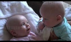 Két ikerbaba társalgása